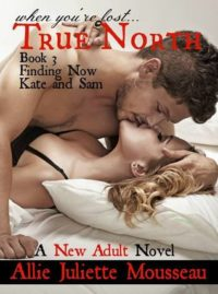 Blitz & Giveaway – True North 3: Finding Now by Allie Juliette Mousseau