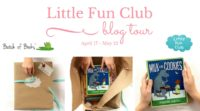 Little Fun Club Blog Tour & $50 Giveaway: A Lit Box for Kids 0-12!
