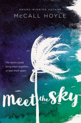 BLINK Summer Reading Tour: Giveaway & McCall Hoyle's Top Ten Addictions