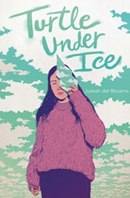 National Poetry Month Feature: Reviews of Your Heart My Sky & Turtle Under Ice